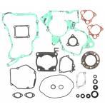 serie guarnizioni e paraoli motore