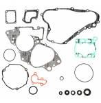 serie guarnizioni e paraoli motore  - Suzuki Rm 85 2002-2021