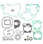 serie guarnizioni e paraoli motore  - Ktm Exc 125 2007-2016